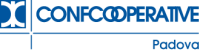 20200603100840_Logo_CCI_Padova_web_BLU2_462.png